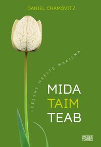 Picture of Mida taim teab